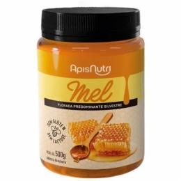 Mel Silvestre Pote (500g) Apisnutri (1)